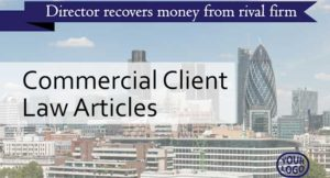 Commercial law articles