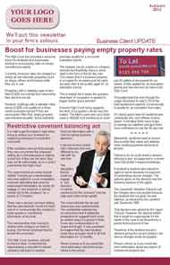 Sample Media Coverage 4 page Business Newsletter for Law Firms